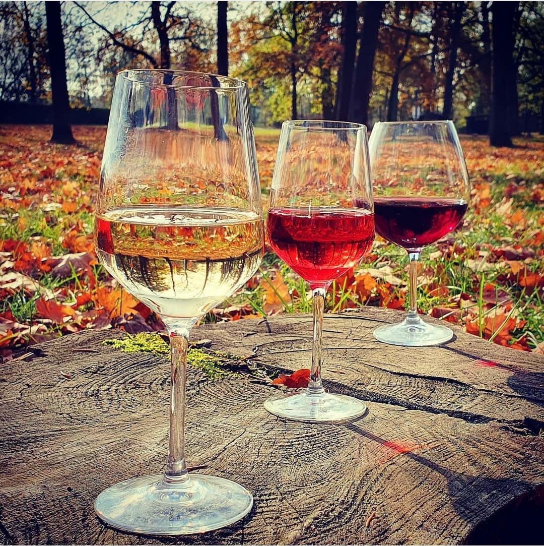 Víno od Procházky Plzeň