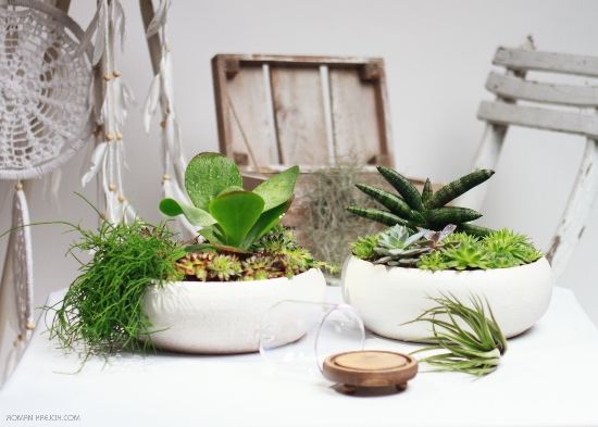Zahrada v misce